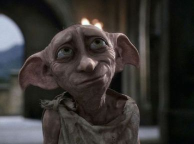 dobby-harry-potter-dog-222063